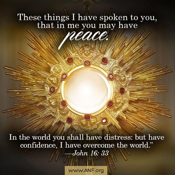 DQ130 - John 16:33 (Peace)